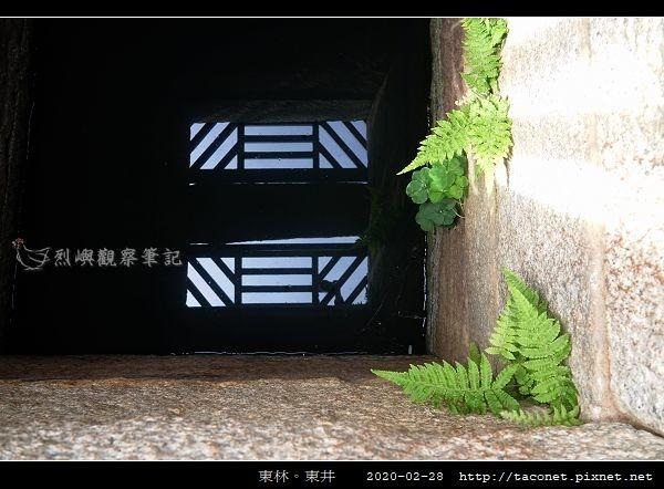 東林東井_09.jpg