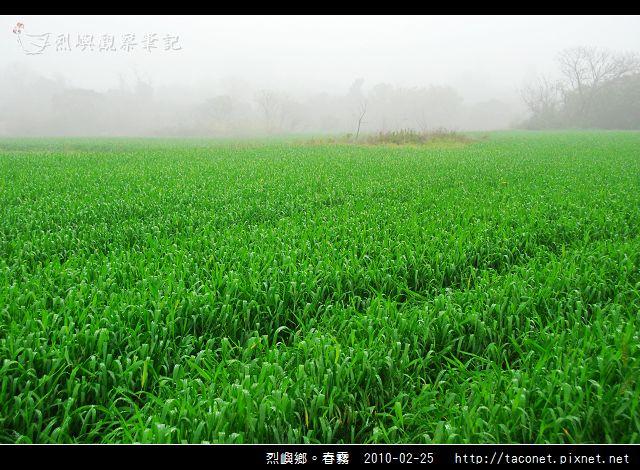 春霧_07.jpg