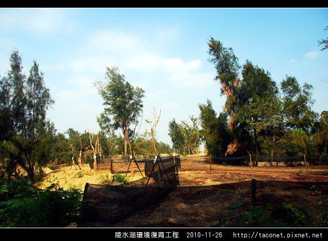 陵水湖環境復育_37.jpg