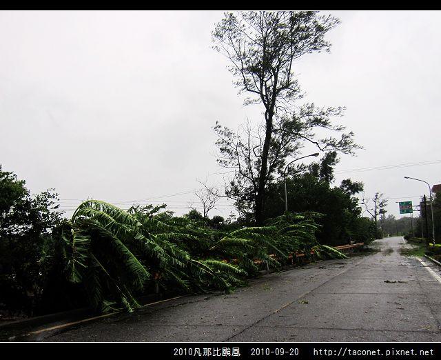 2010凡那比颱風_06.jpg