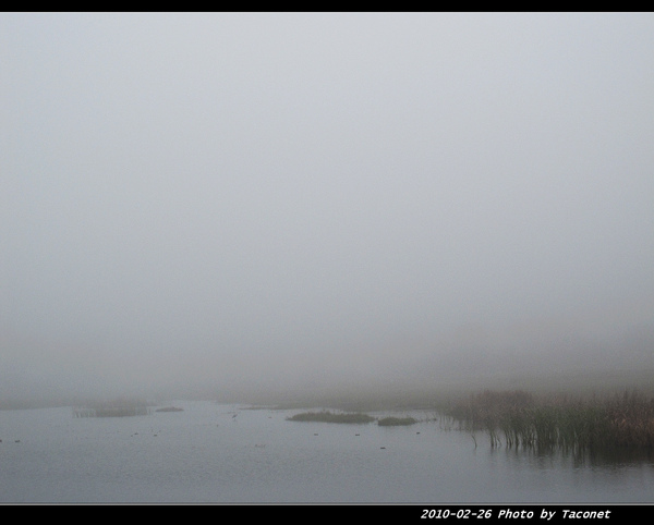 濃霧_46.jpg