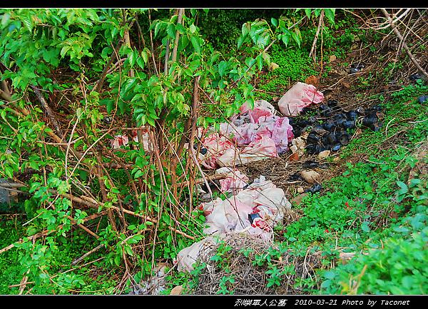 綠美化後留下的垃圾