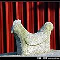 南塘.白雞