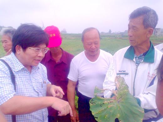20110604-烈嶼芋頭病蟲害防治講習