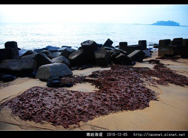 青岐海堤_20.jpg