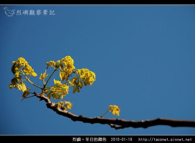 烈噢。冬日的顏色_09.jpg