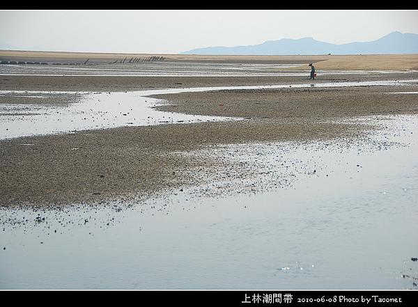 上林潮間帶_01.jpg