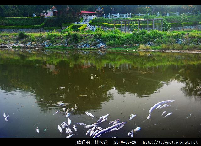 上林水道之死_06.jpg