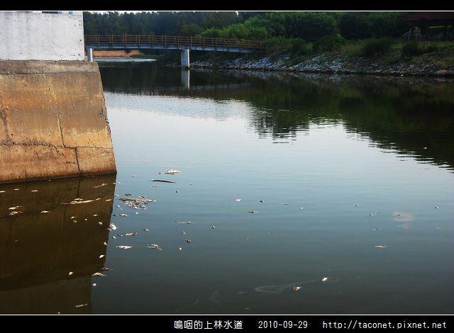 上林水道之死_05.jpg