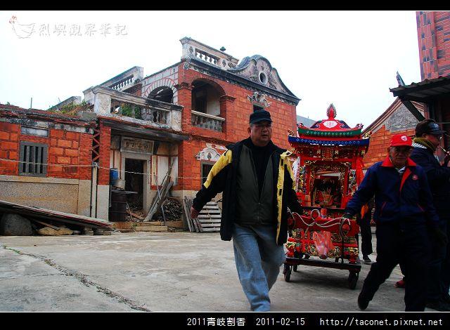 2011青岐割香_31.jpg