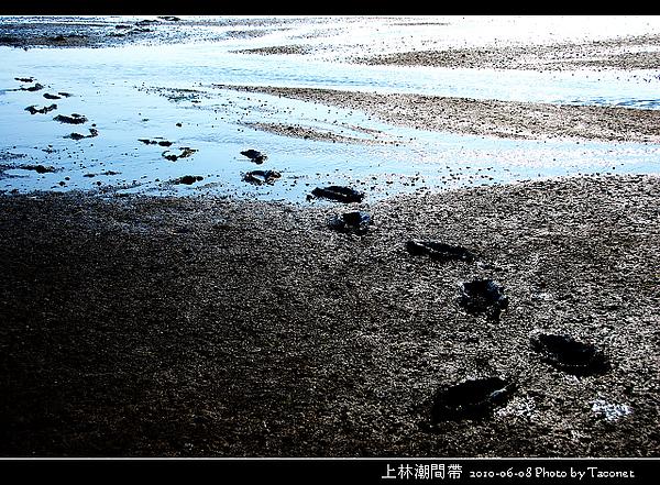 上林潮間帶_19.jpg