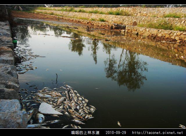 上林水道之死_15.jpg