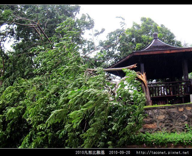 2010凡那比颱風_11.jpg