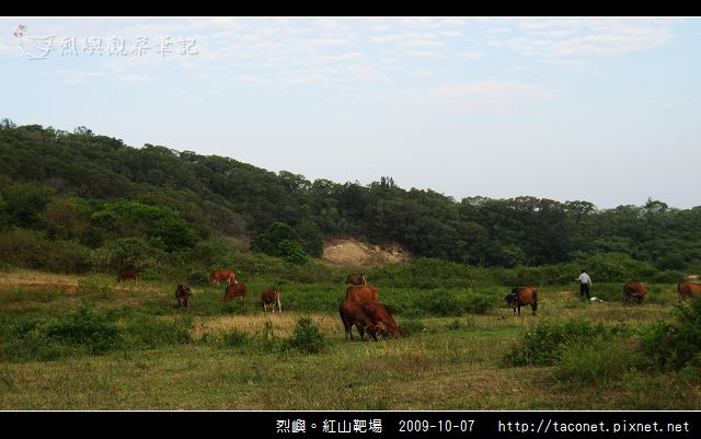紅山靶場_08.jpg