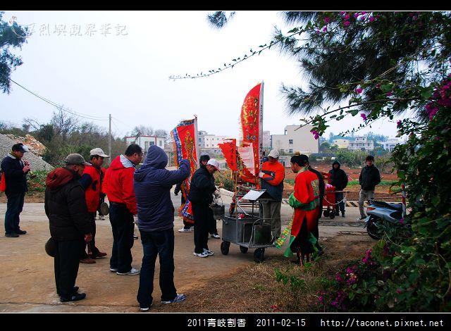 2011青岐割香_53.jpg
