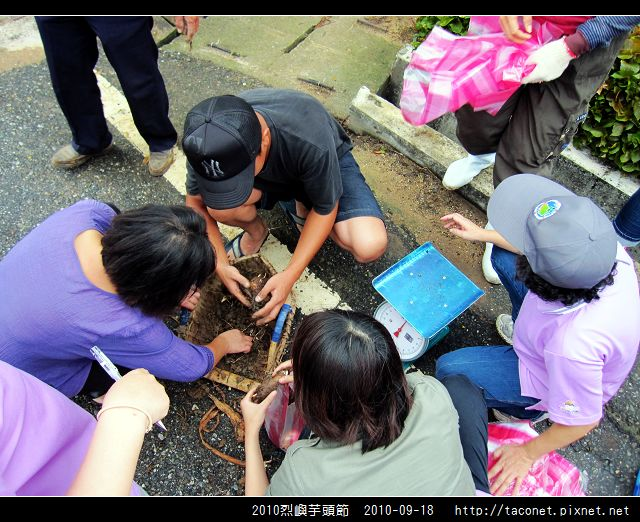 2010烈嶼芋頭節_09.jpg