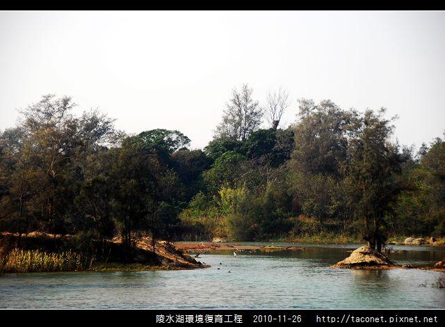 陵水湖環境復育_27.jpg