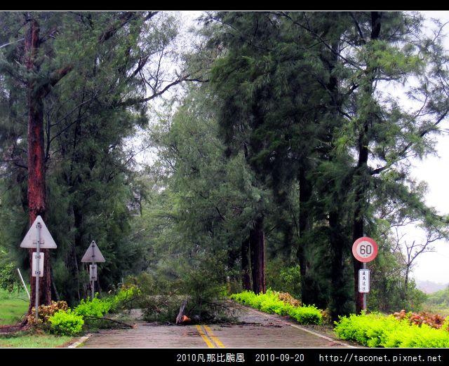2010凡那比颱風_10.jpg