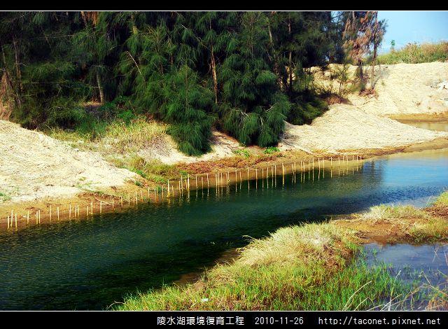 陵水湖環境復育_29.jpg