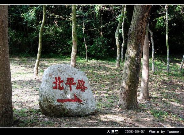 大膽島_45.jpg