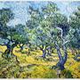Olive Grove  1889橄欖樹叢