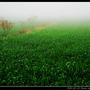 濃霧_12.jpg