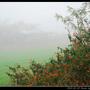 濃霧_17.jpg