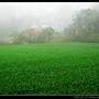 濃霧_35.jpg