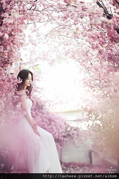TAEHEEW.com 韓國婚紗攝影 Korea Wedding Photography Prewedding -May-05.jpg