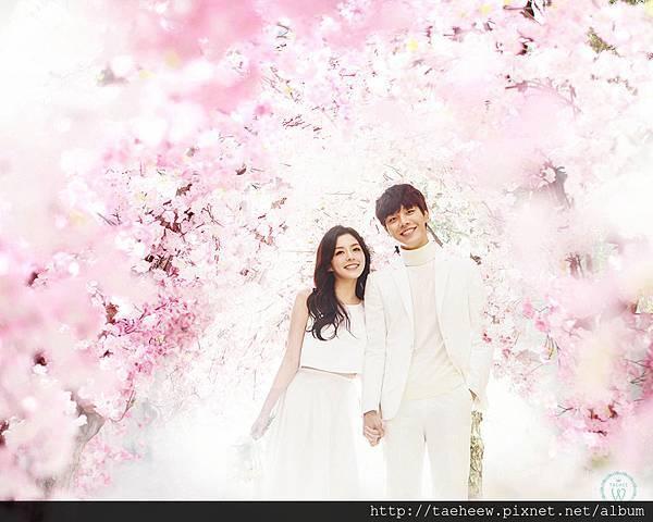 TAEHEE WEDDING 韓國婚紗攝影7.jpg