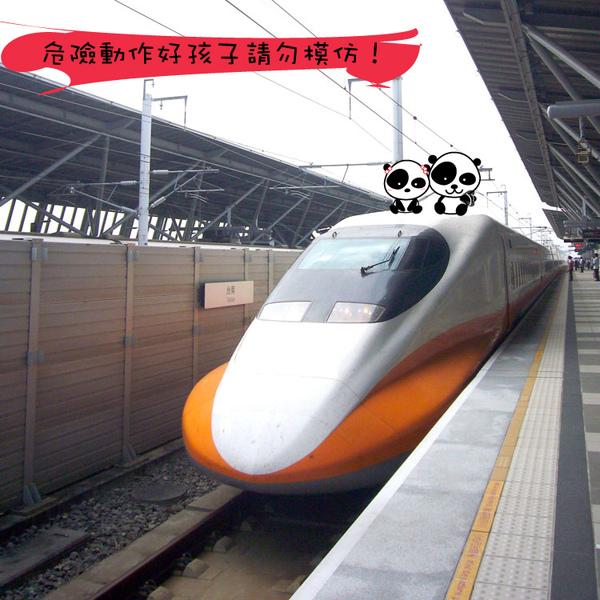 台南店_熊貓坐高鐵.