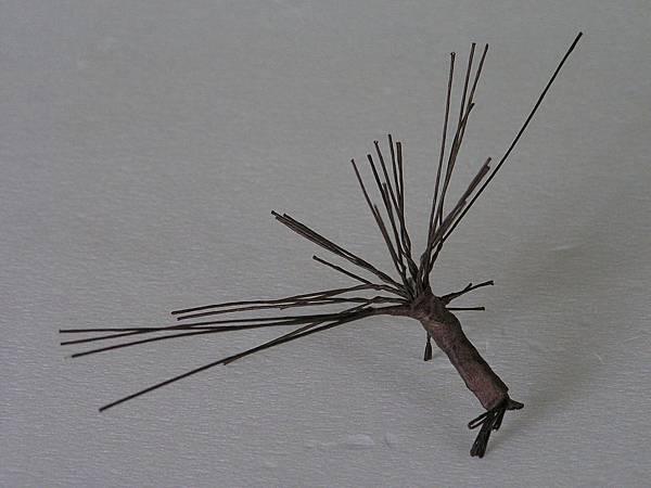15(榕樹型)端枝放射狀扭形.JPG
