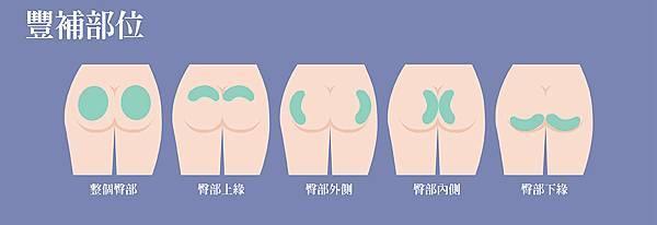 7.臀部豐補部位