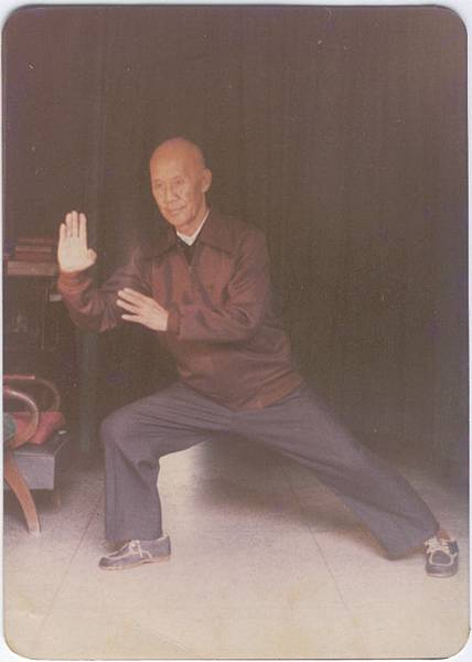 杜毓澤宗師81歲演示陳氏太極拳來攬擦衣之英姿