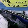 IMAG7011.jpg