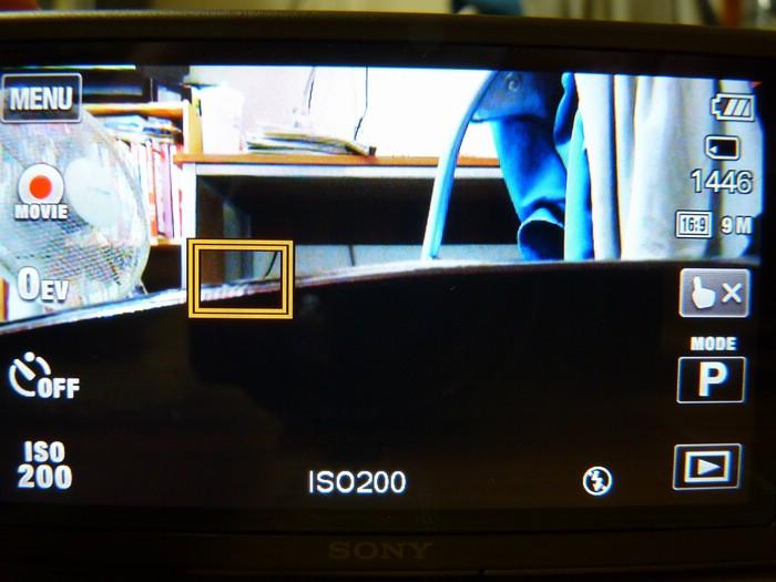 P1120537.jpg