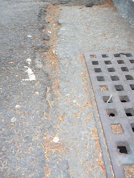 路面與水溝處要求齊一,工務局表示,這是未來柏油鋪設的重要指標。