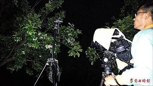 麻豆文旦生長史 縮時攝影全記錄