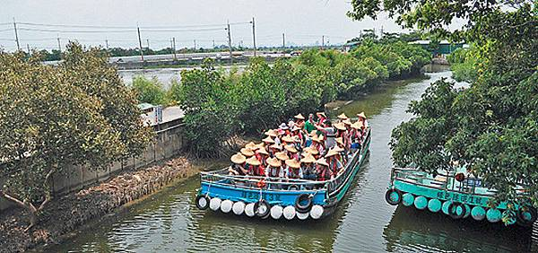 安南區四草紅樹林綠色隧道,兩岸紅樹林成蔭,吸引夏日遊客搭乘觀光漁筏欣賞。