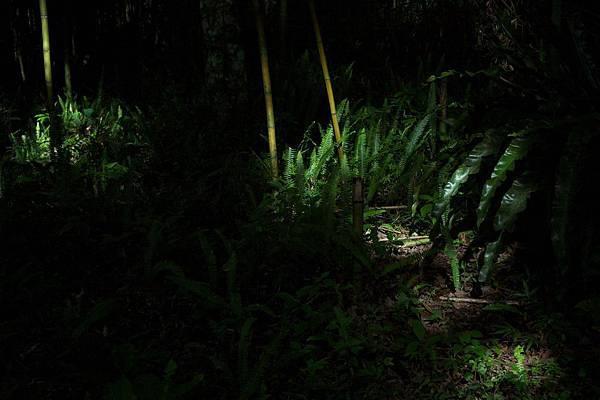 祕密遊 2011-05-28 97.jpg