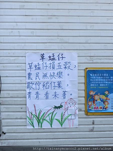 每週台語童謠-草蜢子103.10.28.jpg