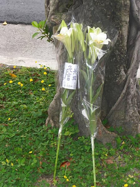 2008/5/19記念詹益樺