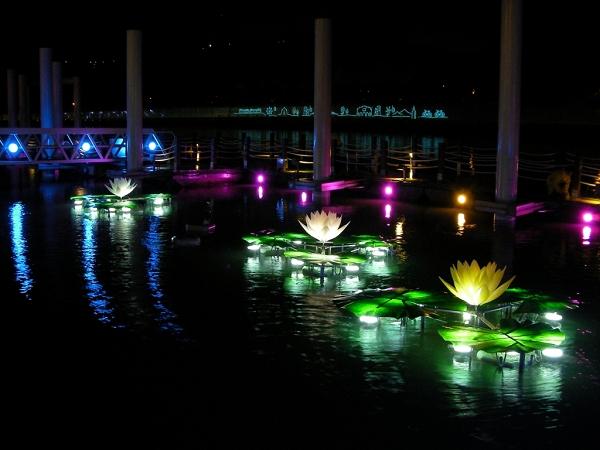 發亮的睡蓮造型燈 隨著漲退潮變化 將在河水中美麗開合