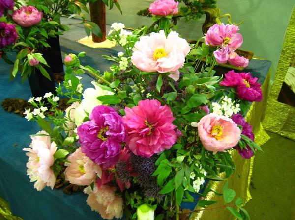 圖六:牡丹花.jpg