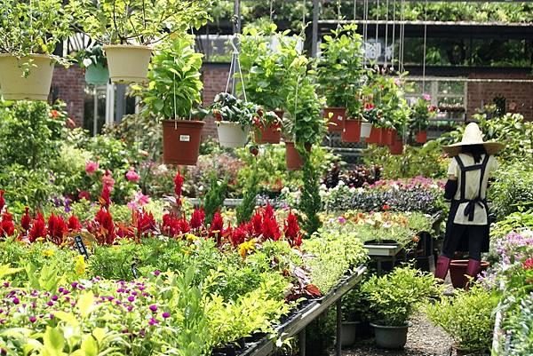 【森林人講座】106/07 植物的基本介質介紹(受颱風影響,延期至8/5舉行)