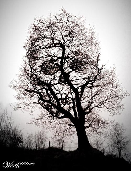 tree-of-death-photomanipulation.jpg