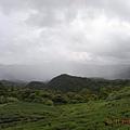 颱風滴天象