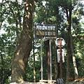 森林步道終點