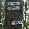 往島田 石麻達山