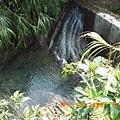 清澈滴溪水